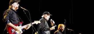 The Beach Boys visitan Madrid y Marbella